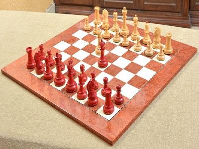 В нашем филиале прошёл открытый турнир по шахматам Фишера.